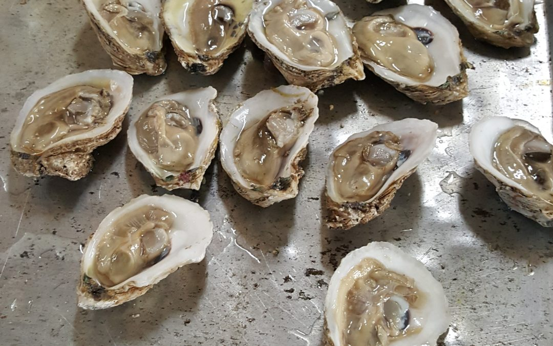Thank you for supporting the 97th Annual Oyster Roast!